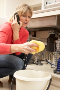 Water damage repair specialists