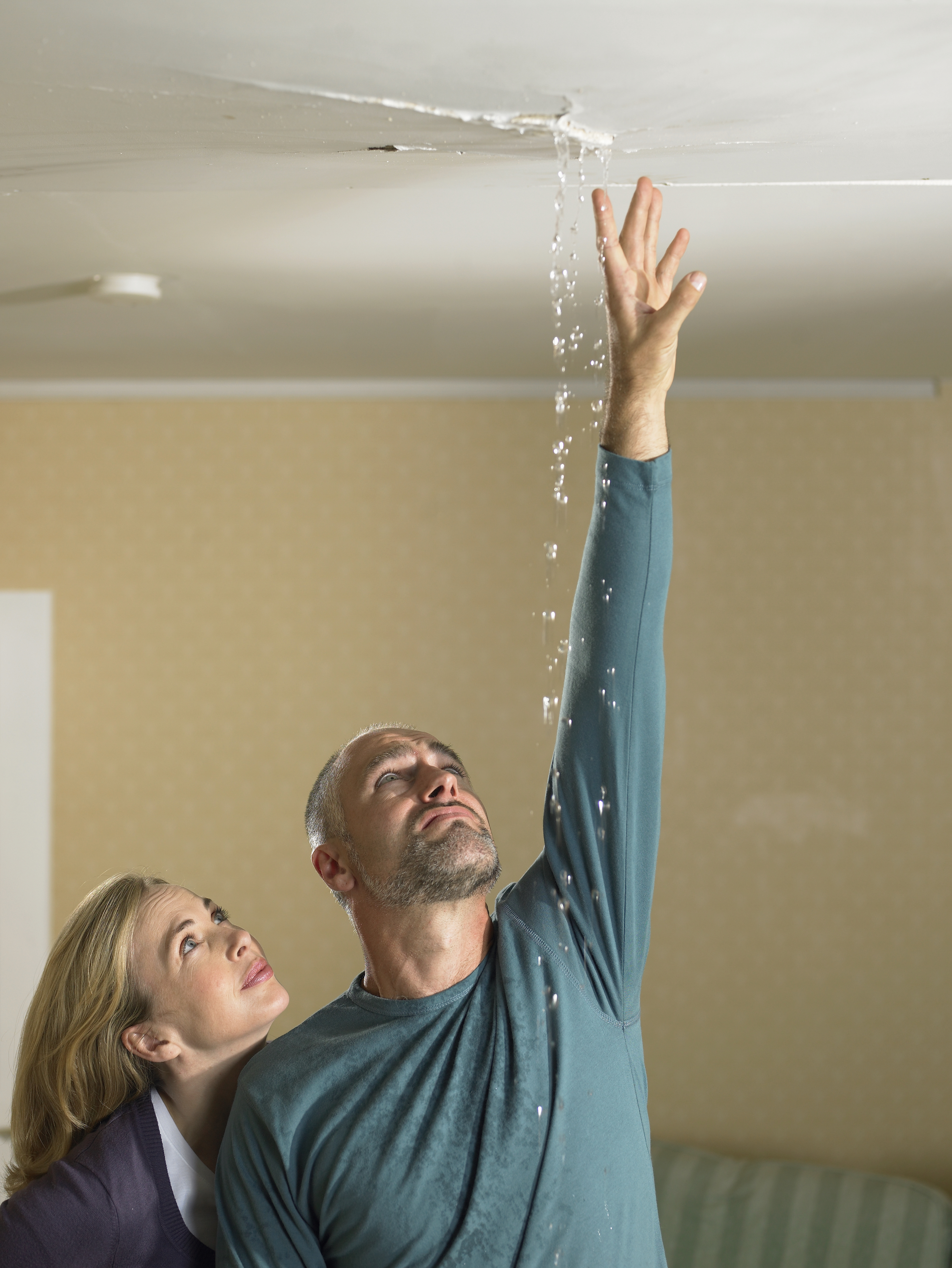 Making a ceiling repair claim? Need a professional quote for